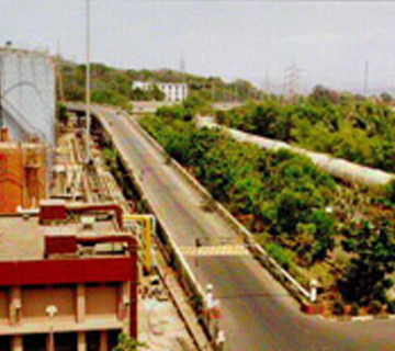 Plant Roads And Flyover